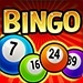 bingo Online casinos for US players   All you need to know about!